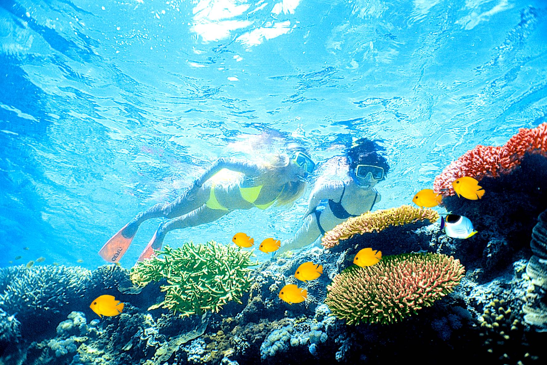great barrier reef did you know gts