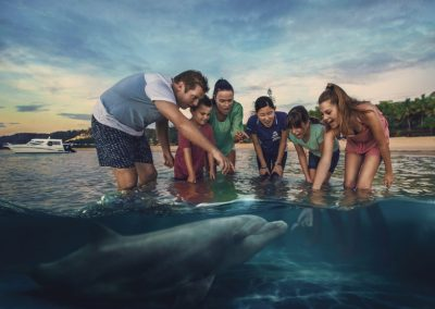 邂逅海洋生物