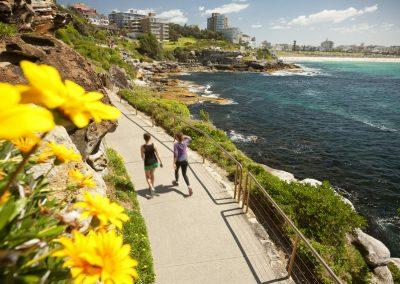 Chic Sydney Tour Ocean Walks